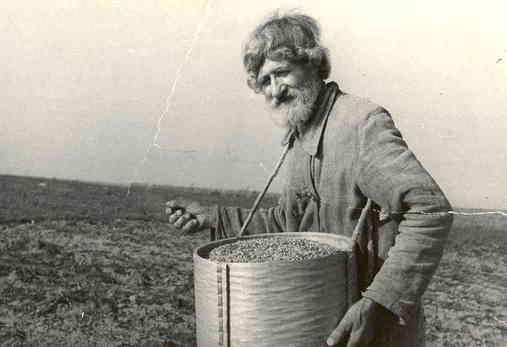 Уметь сеять зерна - основа жизни