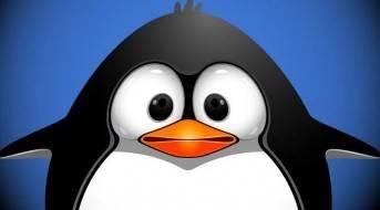 Google объявил о запуске Penguin 4.0