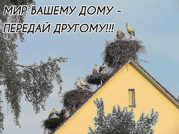 Мир вашему дому